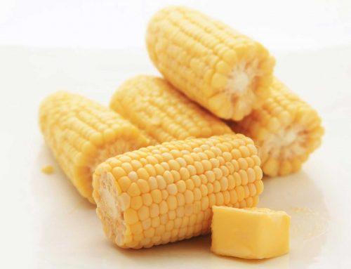 Sous Vide Corn on the Cob
